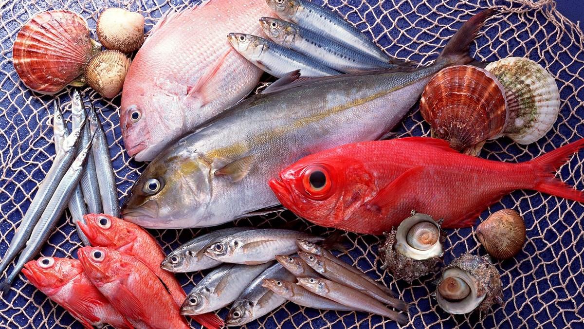 lựa chọn cá tươi ngon