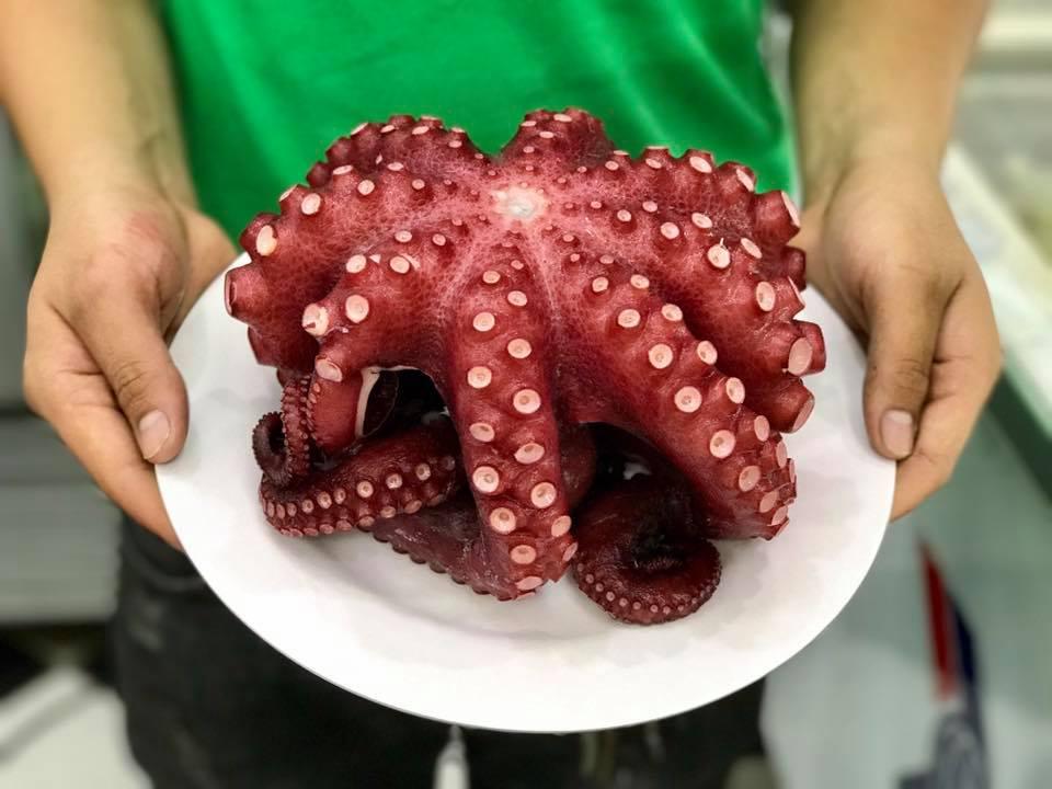 thức ăn của bạch tuộc